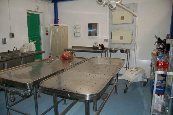 Mortuary 2 Film Medical