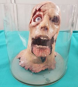 Severed Synthetic Head in a jar