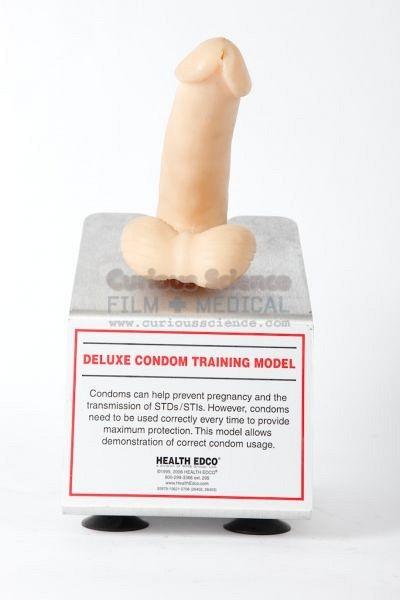 Condom training model